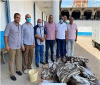 ضبط 68 طن أسماك مجمدة غير صالحة للاستهلاك الآدمي بكفر الدوار