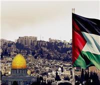 سامح شكري: نتعامل مع أي حكومة في إسرائيل لإقامة دولة فلسطين