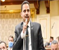 زعيم الأغلبية يعلن موافقته على الموازنة العامة للدولة ويطالب بتنمية الإيرادات