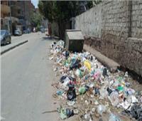 حملة نظافة وتجميل في أوسيم بالجيزة  صور