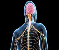 علماء يكشفون العلاقة بين التمارين الشاقة ومرض «العصبون الحركي»