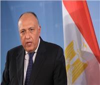 وزير الخارجية عن أزمة السد: نسعى للحلول السلمية لكن كل الخيارات مطروحة