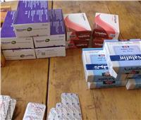 «إدارة الصيدلة والتفتيش» تضبط 6 صيدليات بهم أدوية مهربة بـ«المنوفية»