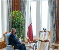 وزير الخارجية يُسلم أمير قطر رسالة من الرئيس السيسي
