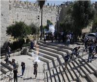 الاحتلال يعتدي على فلسطينيين في باب العامود ويعتقل شابين