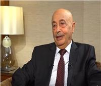 حوار  رئيس «نواب ليبيا»: لن ننسى مواقف مصر في الأزمة الليبية