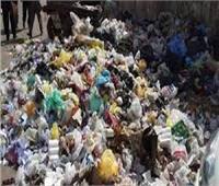 رفع 279 طن قمامة في حملة بحي ثان طنطا