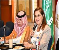التخطيط: 4.4 مليار دولار حجم التبادل التجاري بين مصر والسعودية