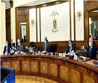 الحكومة: «الصحة العالمية» تدعم الجهود المصرية المبذولة لتصنيع لقاح المضاد لكورونا