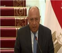 وزير الخارجية: حرية الشعب الفلسطيني حق أصيل مثل بقية الشعوب | فيديو
