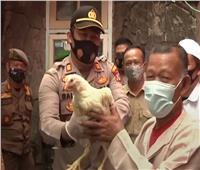 مدينة إندونيسية توزع «دجاجا»على المواطنين لتشجيعهم بتلقي لقاح كورونا| فيديو