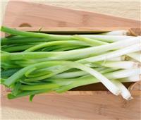 أفضل طريقة لتخزين البصل الأخضر