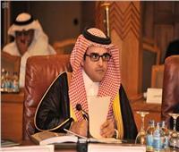 رئيس اللجنة الدائمة للإعلام العربي: الشراكة المصرية السعودية تاريخية