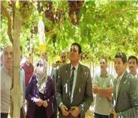 التركاوي يتفقد عددًا من المزارع الزراعية بالسادات