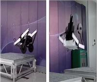 صور وفيديو| تطوير روبوت يمتلك قدرات تخطيط المسار لمواجهة أي عقبة
