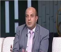 التموين: مصر استطاعت أن تصل إلى شبه اكتفاء ذاتي من السكر