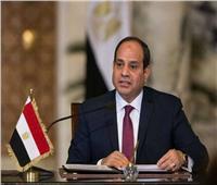 الرئيس السيسي: تصدينا للإرهاب والتطرف وحققنا البناء والتنمية والتعمير