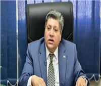 التنمية المحلية: اهتمام مصر بالقارة الأفريقية ترجمة لبرنامج عمل الحكومة المصرية