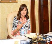 وزيرة الهجرة تبحث مشكلة شرط التنازل عن الجنسية المصرية للحصول على الألمانية