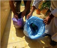 صور| استخراج أعمال سحرية خلال حملة تطهير المقابر بـ«الدلجمون» في الغربية