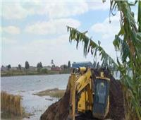 إزالة 541 حالة تعدعلى نهر النيل في بني سويف