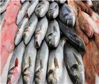 أسعار الأسماك بسوق العبور اليوم ١٩يونيو