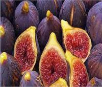 «الزراعة» تصدر أهم التوصيات الفنية لمزارعي محصول التين