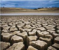 فاينانشيال تايمز: البرازيل تتعرض لأسوء موجة جفاف منذ قرن بالتزامن مع كورونا