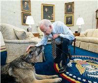 بايدن وزوجته يرثيان كلبهما بكلمات مؤثرة