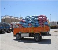 محافظ المنيا: توريد 372 ألف طن من الأقماح
