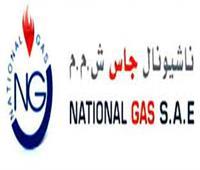 شاهد بـ«فساد الغاز»: مجدي راسخ وشركائه امتنعوا عن توريد أكثر من مليار جنيه