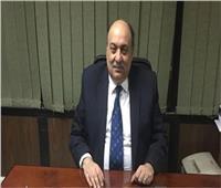 مستشار وزير التموين: إضافة الزوجات إلى البطاقة التموينية دون قيود يوليو القادم