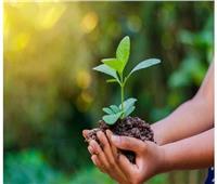 وزارة التخطيط تبحث آليات دعم تحول القطاع الخاص إلى الاقتصاد الأخضر
