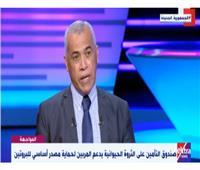 وزارة الزراعة: ربع الثروة الحيوانية في مصر تم التأمين عليها