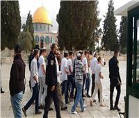 عشرات المستوطنين يقتحمون المسجد الأقصى واعتقال 11 فلسطينيا في الضفة