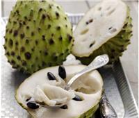فوائد فاكهة القشطة.. علاج فعّال لجفاف الشعر في فصل الصيف
