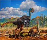 عاش قبل 120 مليون سنة.. العثور على الديناصور الطائر| فيديو