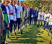 فيديو  «هنجملها»..مبادرة لزراعة 3200 شجرة في الوادي الجديد