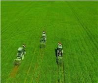 نقيب الفلاحين: مصر حققت نجاحات غير مسبوقه في القطاع الزراعي