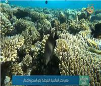 «مدن مصر العالمية.. الغردقة أرض السحر والجمال»  فيديو