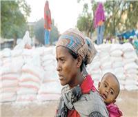 الأمم المتحدة :٤٠٠ ألف دخلوا دائرة المجاعة فى تيجراى