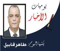 مصر الجديدة وثورة تصحيح المسار
