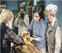 «حواس»: الروس مهتمون بالآثار المصرية.. وعقوبة التنقيب عن الآثار وصلت إلى المؤبد