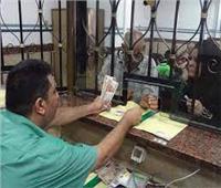 لـ«أصحاب المعاشات»: خطوات تتبعها عند «فقد بطاقة الصرف»