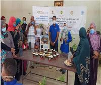 الزراعة» و«الفاو» يشاركان في مبادرة تحسين الوضع الغذائي للأسرة المصرية