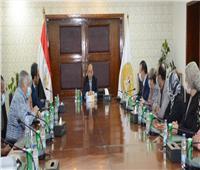 شعراوي: دعم القيادة السياسية والحكومة سبب النجاحات التي تحققت بالصعيد