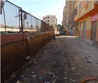 حملة نظافة ورفع التراكمات والمخلفات بشوارع بشتيل