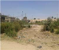 مشروع متوقف من 8 سنوات بقرية في الشرقية يتحول لأرض تسكنها الأفاعي | صور