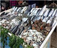 استقرار أسعار الأسماك بسوق العبور اليوم 11 يوليو