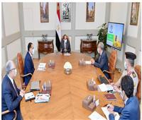 الرئيس السيسي يتابع توافر المخزون الاستراتيجي من السلع التموينية الأساسية
